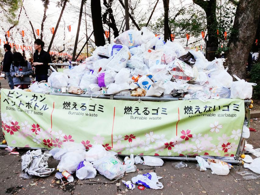 Sacs poubelles sur un site de hanami populaire