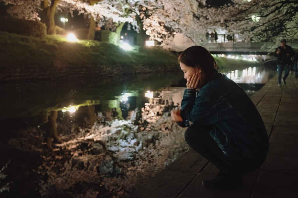 les cerisiers en fleur de toyama se reflètent sur les eaux de matsukawa river