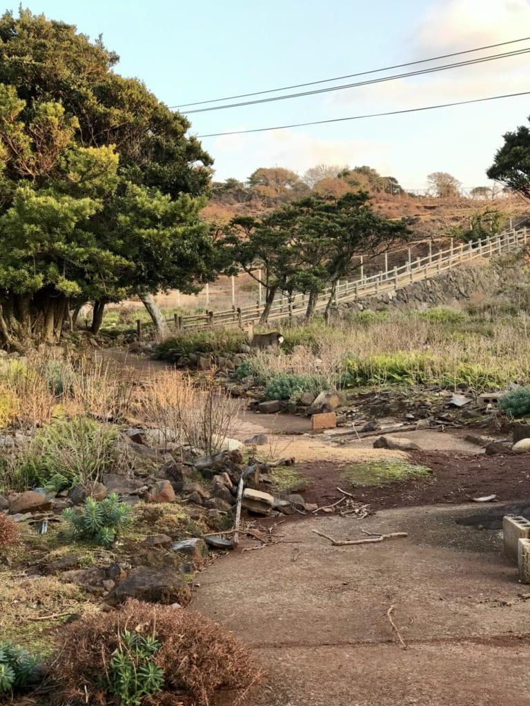 Sentier de randonnée de Nozakijima