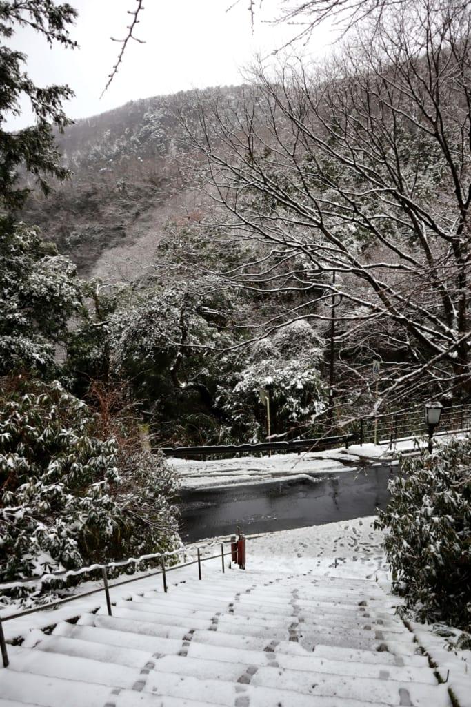 escaliers et arbres enneigés à Mitoku, dans la préfecture de Tottori