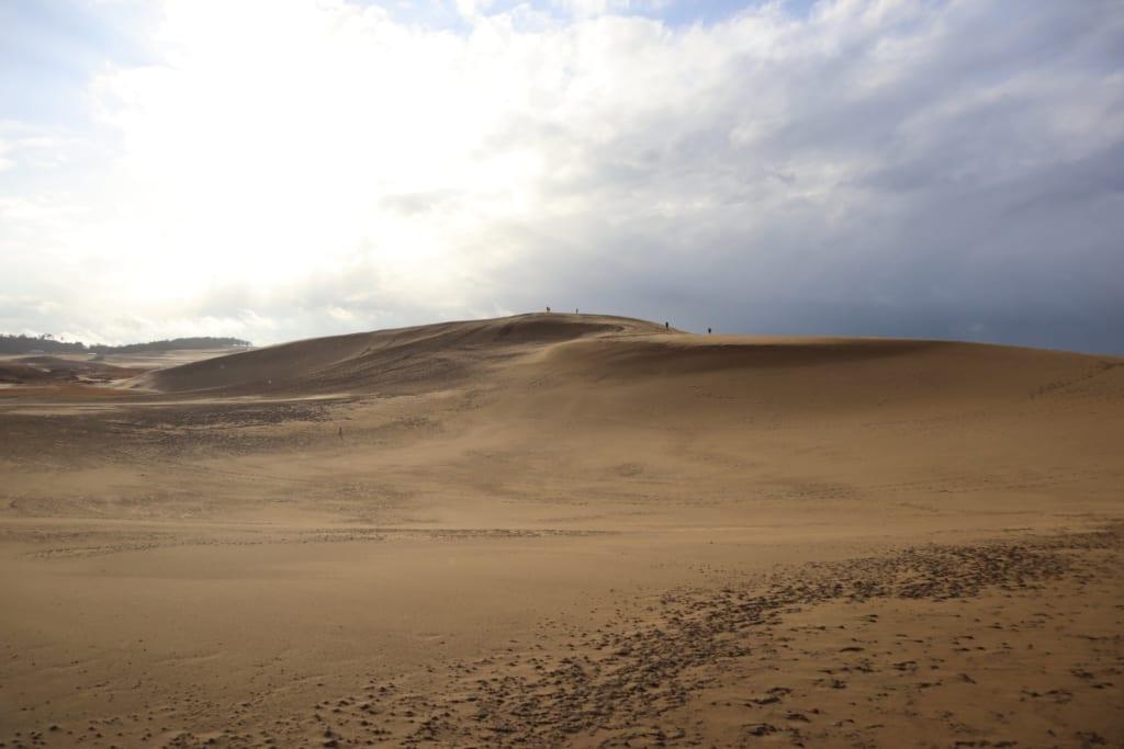 Les étendues de sable des dunes de Tottori