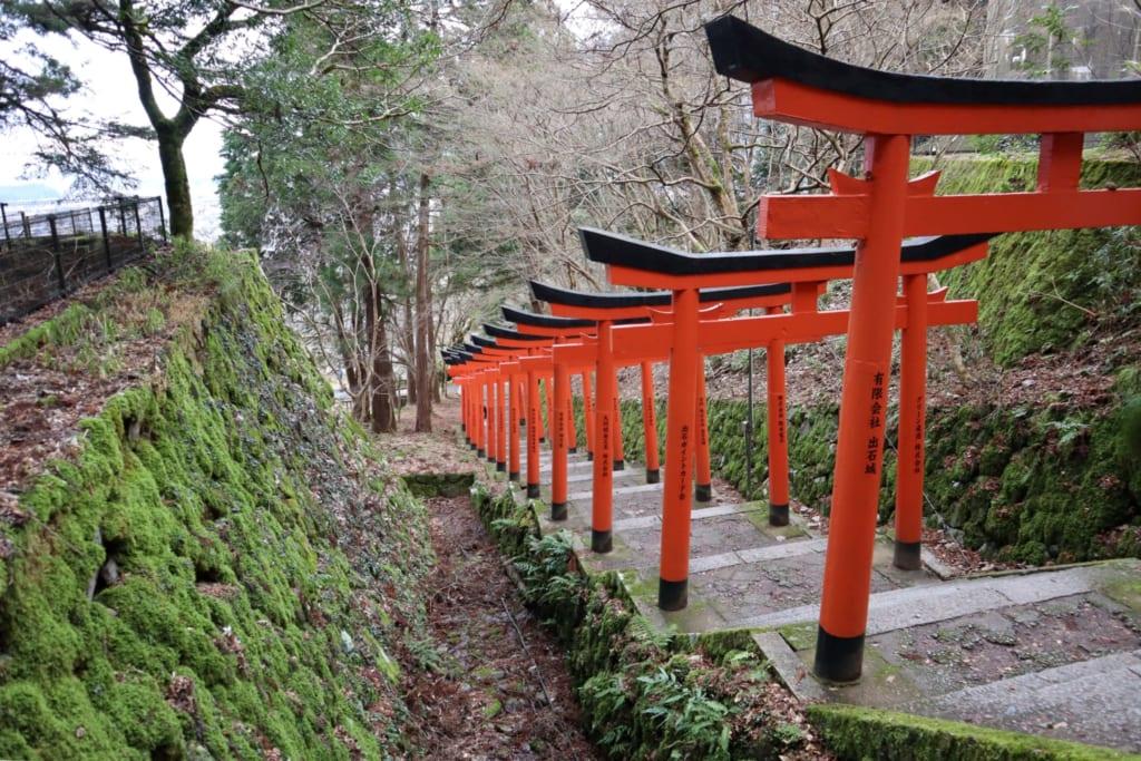 allée de toriis