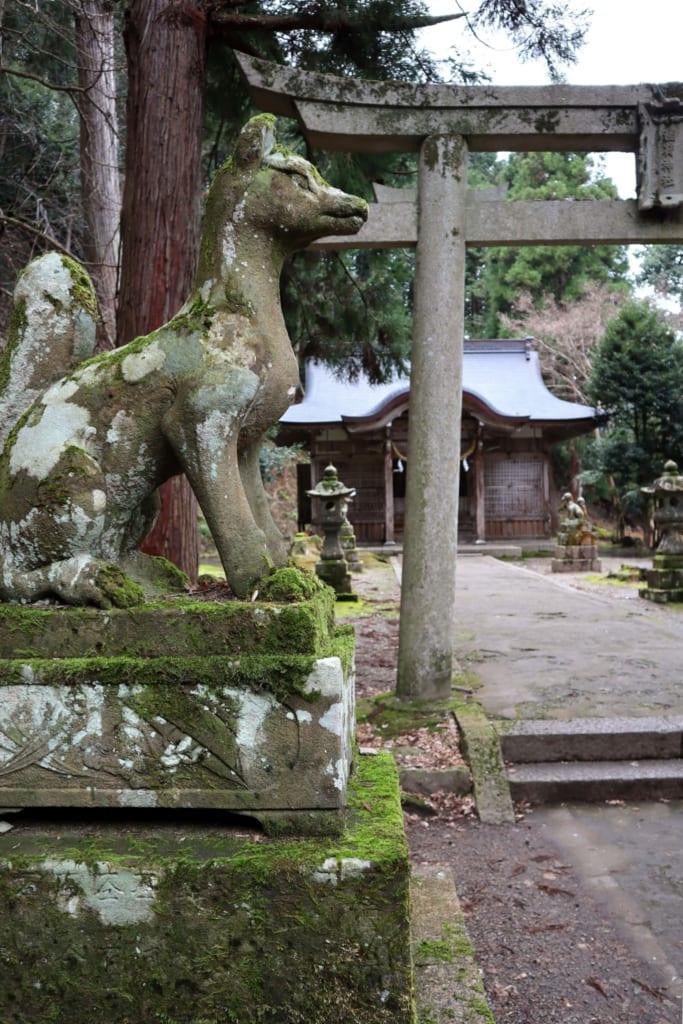 Sur le chemin menant au château d'izushi