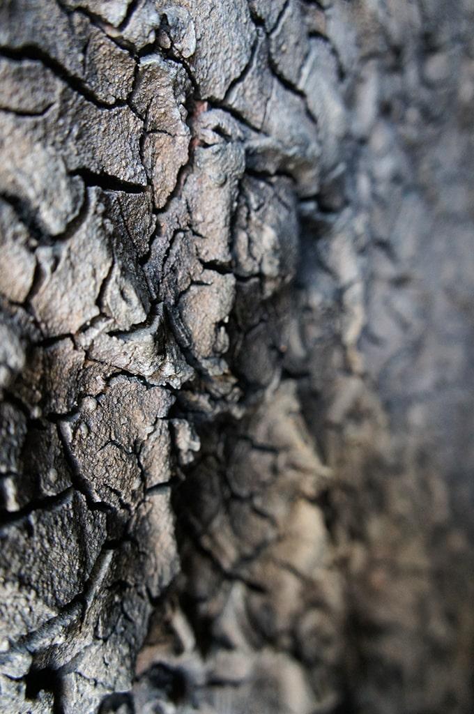 Détail de l'intérieur du four grimpant de Shigaraki