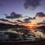 L'île de Sado, écrin naturel et historique de la mer du Japon
