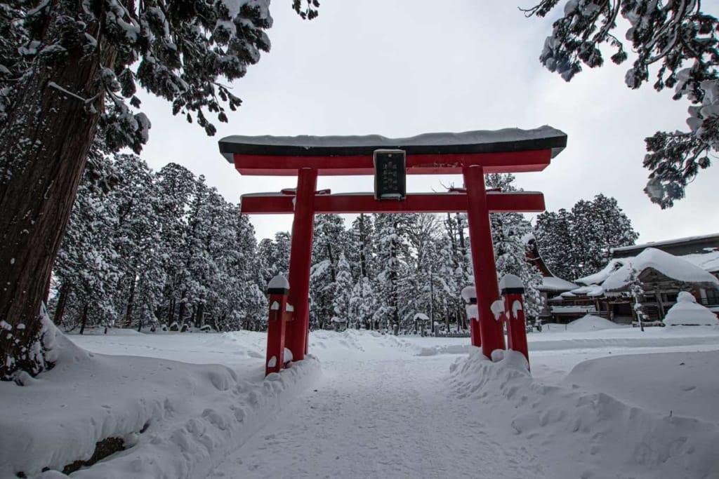 Torii majestueux du Mont Haguro, à Tsuruoka