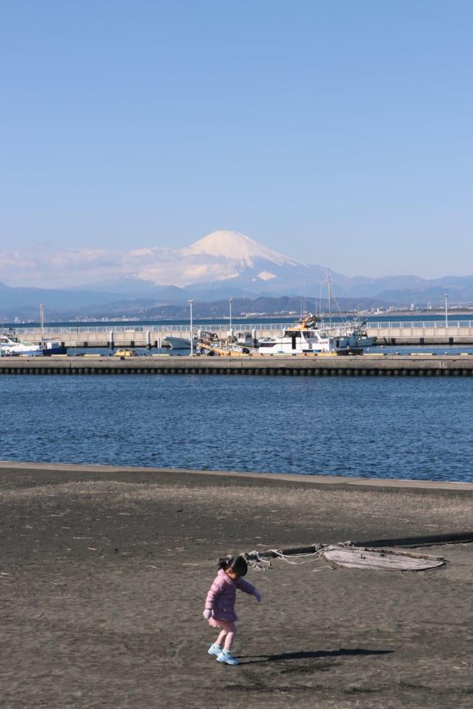 le mont fuji depuis les côtes de l'île d'enoshima