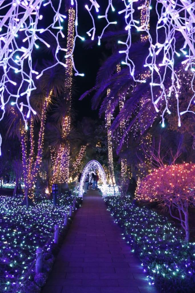 un jardin éclairé durant le shonan no hoseki
