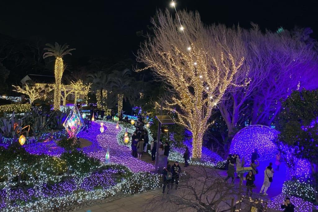 les illuminations d'enoshima durant le shonan no hoseki vu depuis la terrasse d'observation