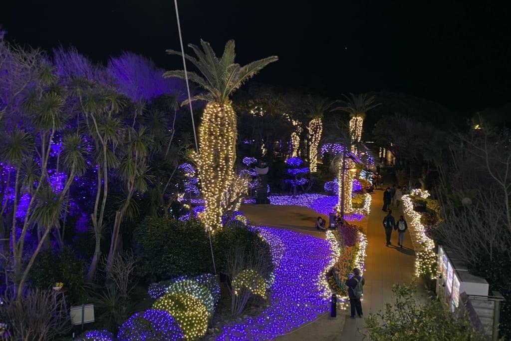 le jardin samuel cocking illuminé durant le shonan no hoseki