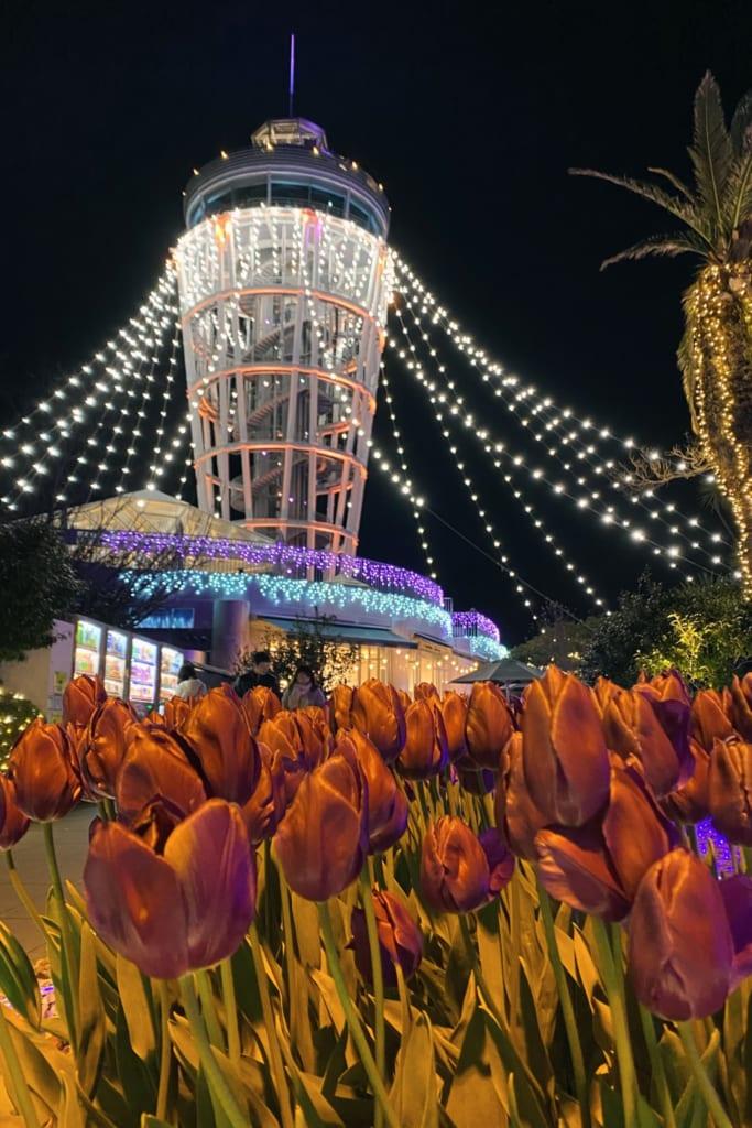 l'observatoire d'enoshima encadré par des tulipes et les illuminations du shonan no hoseki