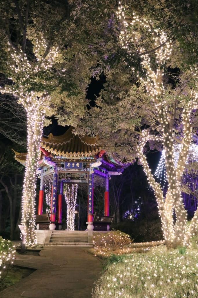 des arbres illuminés durant le shonan no hoseki à enoshima