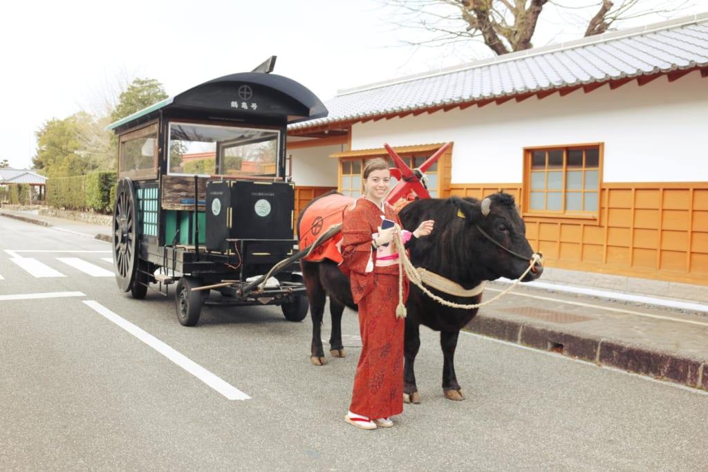 promenade dans les rues d'izumi avec un char à boeuf