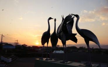 statue des grues japonaises d'Izumi au lever du soleil