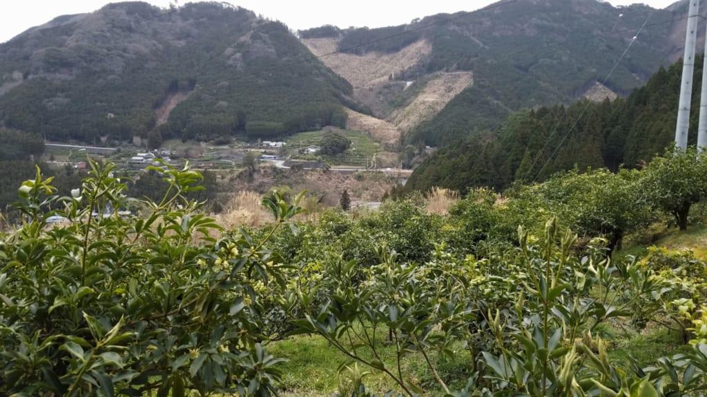 les paysages montagneux de l'île de Shikoku à Toon dans la préfecture d'Ehime