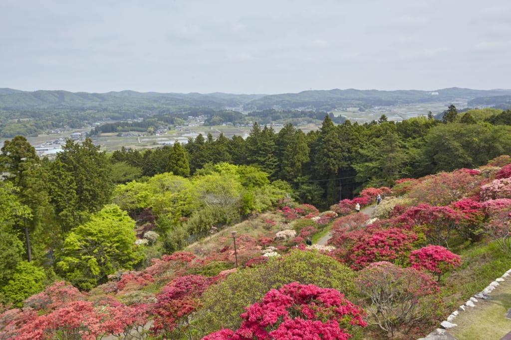 La vue depuis le haut d'un des plus beaux jardins japonais du japon