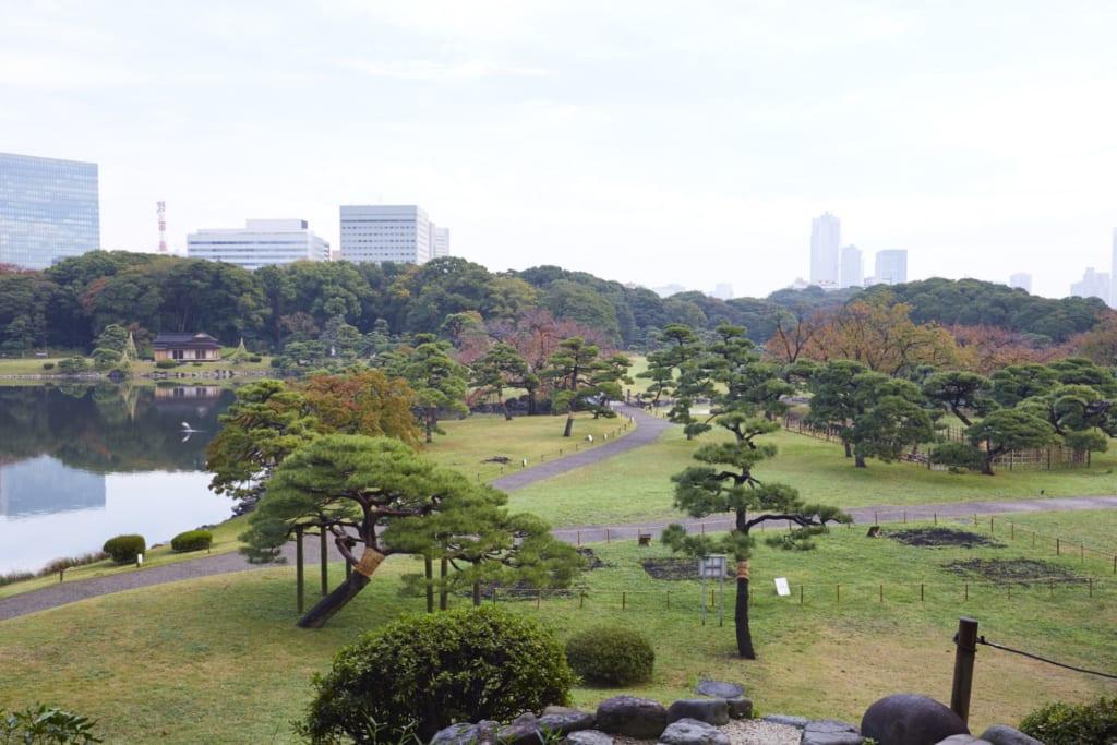 Jardin japonais à Tokyo