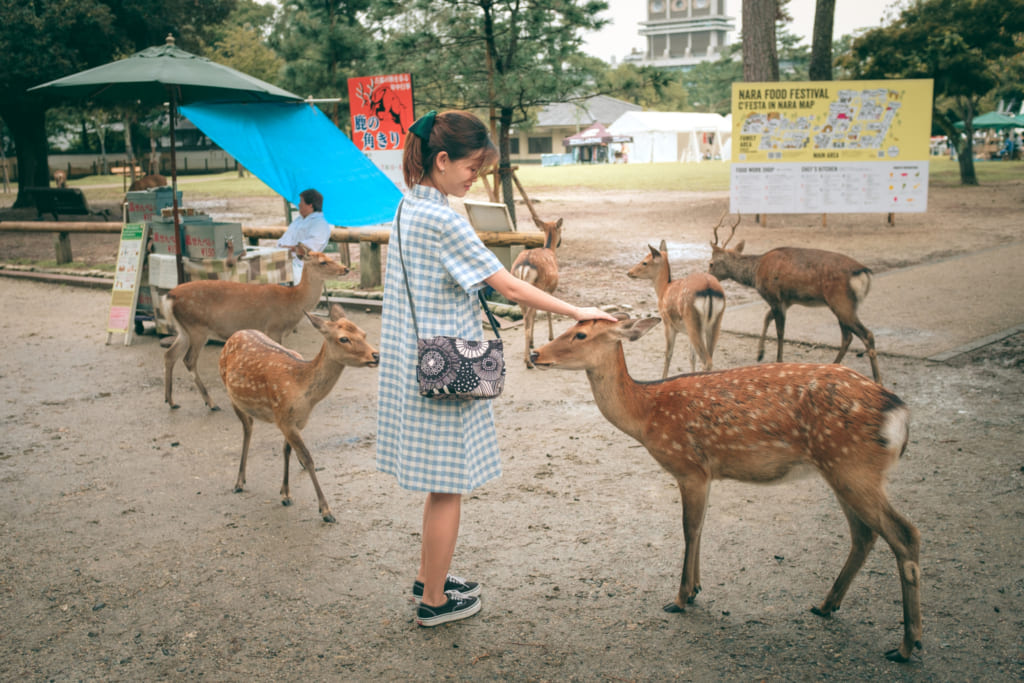Les daims du parc de Nara tournent autour des stands de shika senbei