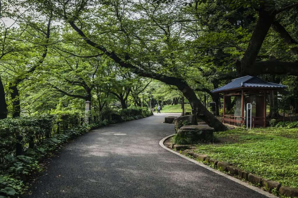 Le parc Asukayama à Oji durant l'été