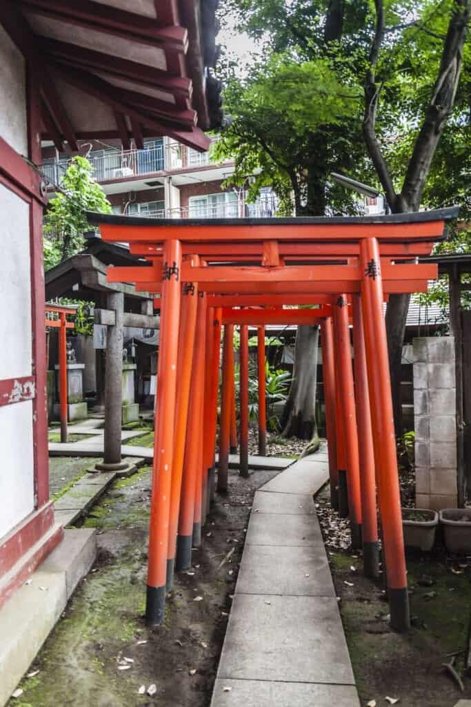 allée de torii dans un sanctuaire japonais