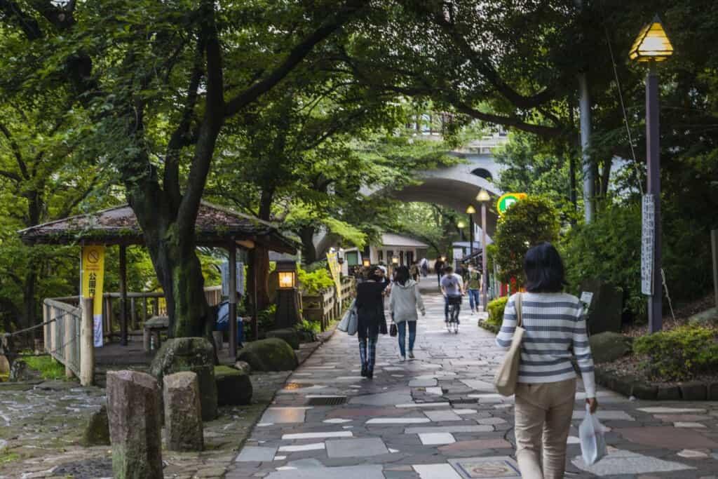 Ruelle du parc Otonashi Shinsui