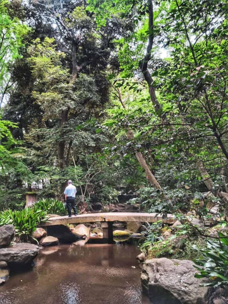 Le parc Nanushinotaki, une oasis de nature en plein coeur de Tokyo