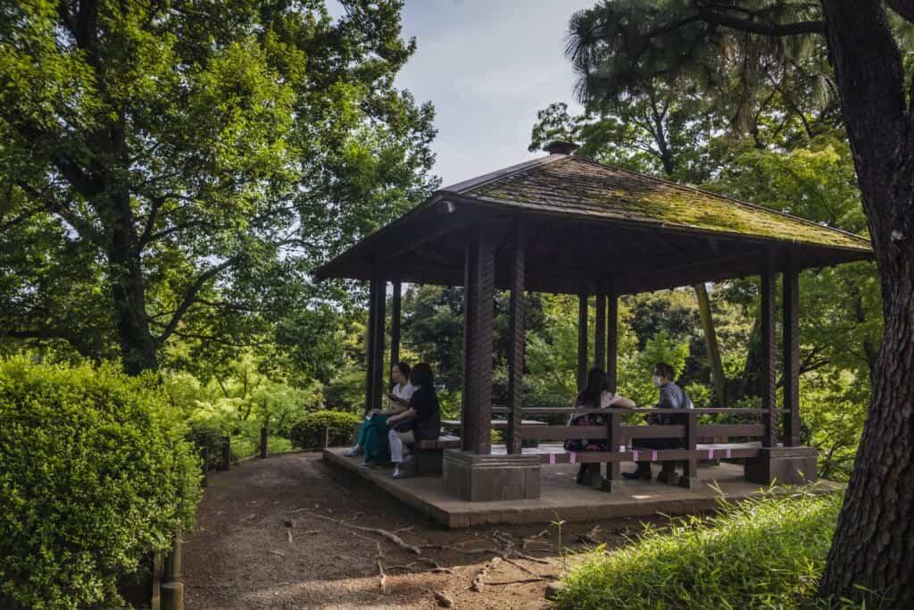 Tonelle dans un jardin japonais