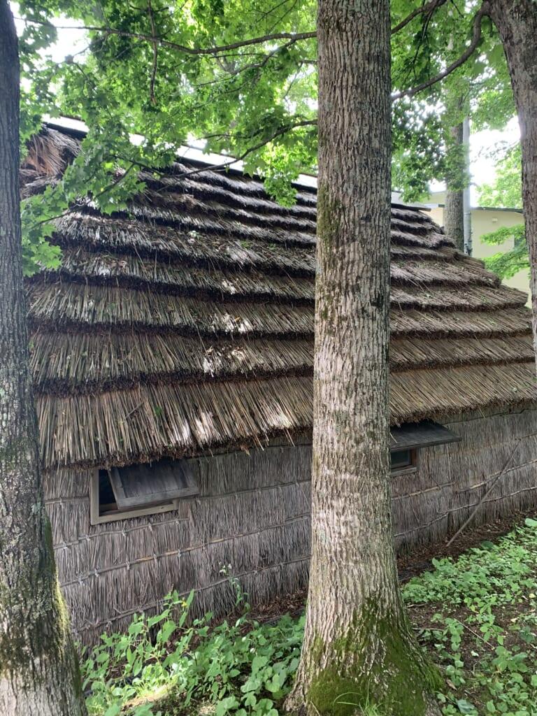 Maison traditionelle aïnou, peuple autochtone d'hokkaido