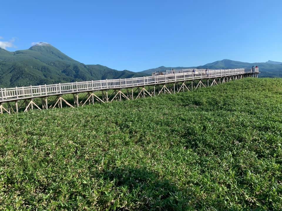 sentier en bois aménagé dans un parc national japonais