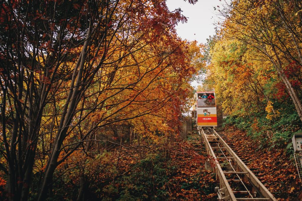 téléphérique montant parmi des arbres durant l'automne au japon