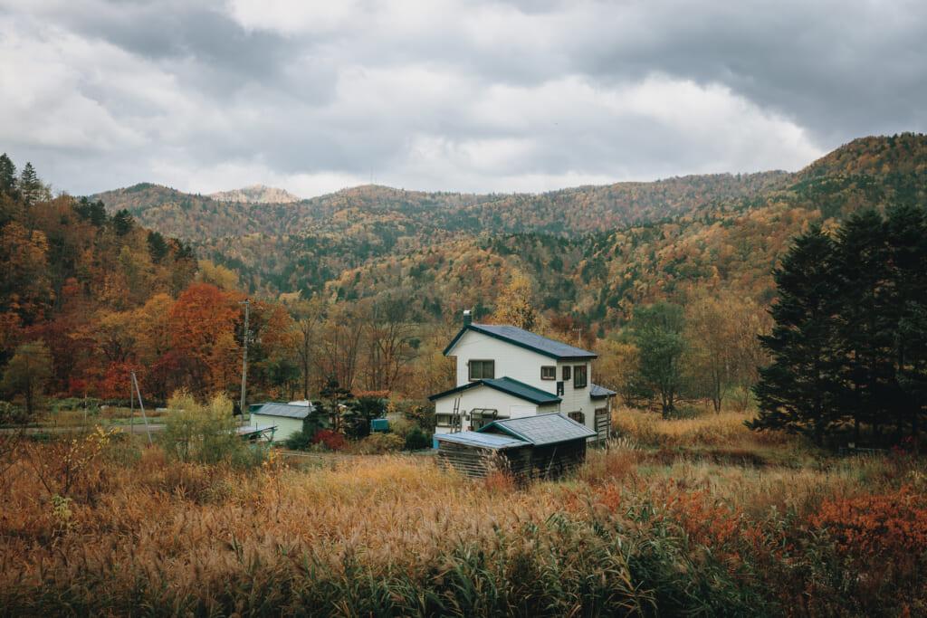 L'automne japonais à Hokkaido