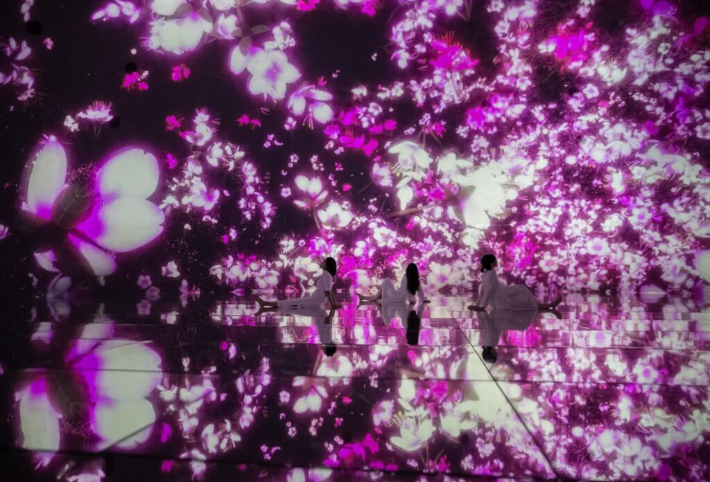 fleurs de cerisier digitales