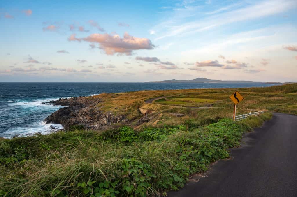 Route isolée et nature sauvage en bord de mer sur l'île d'Ojika