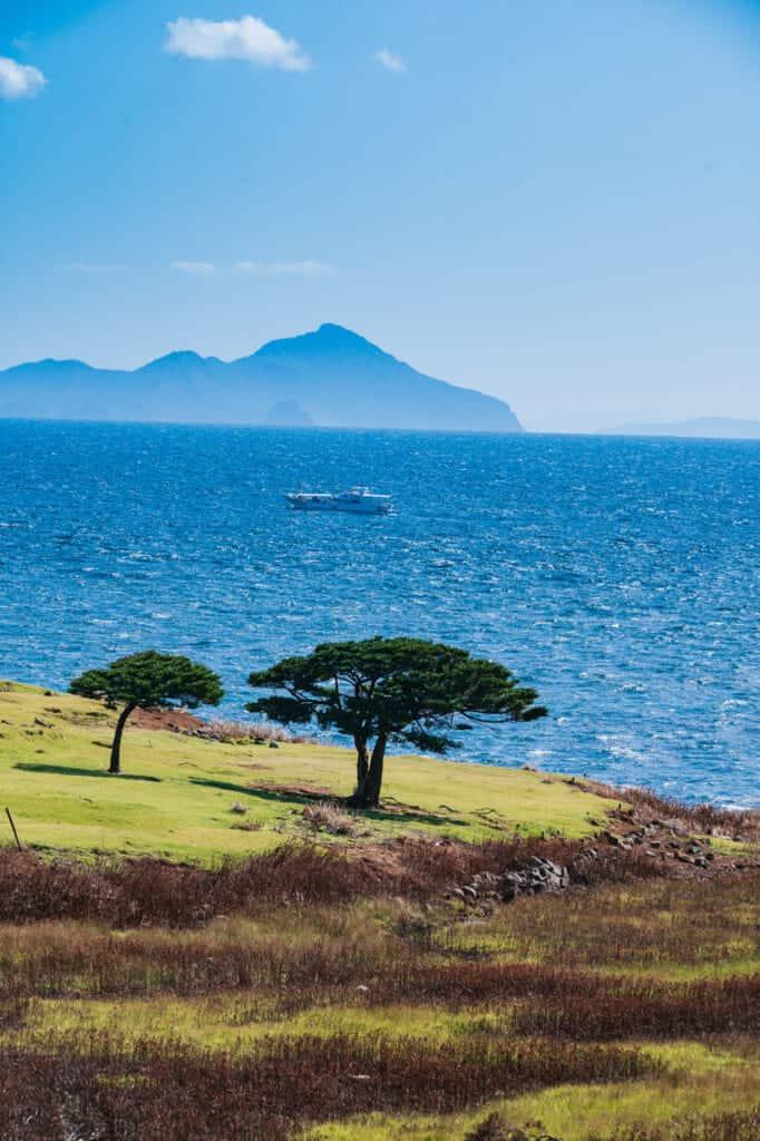 La zone de savane de l'île de Nozaki