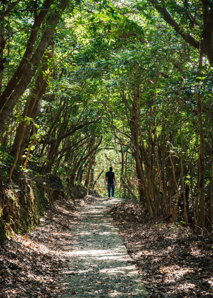 sentier de randonnée sur l'île de Fukue