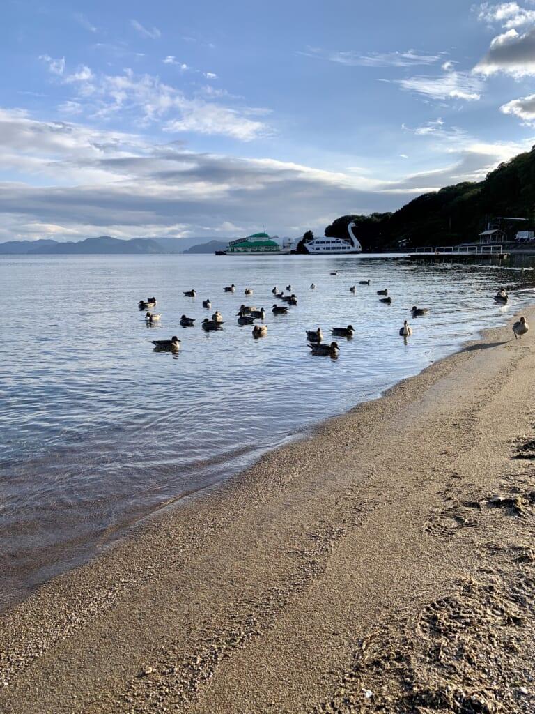 les rives du lac inawashiro sur la diamond road
