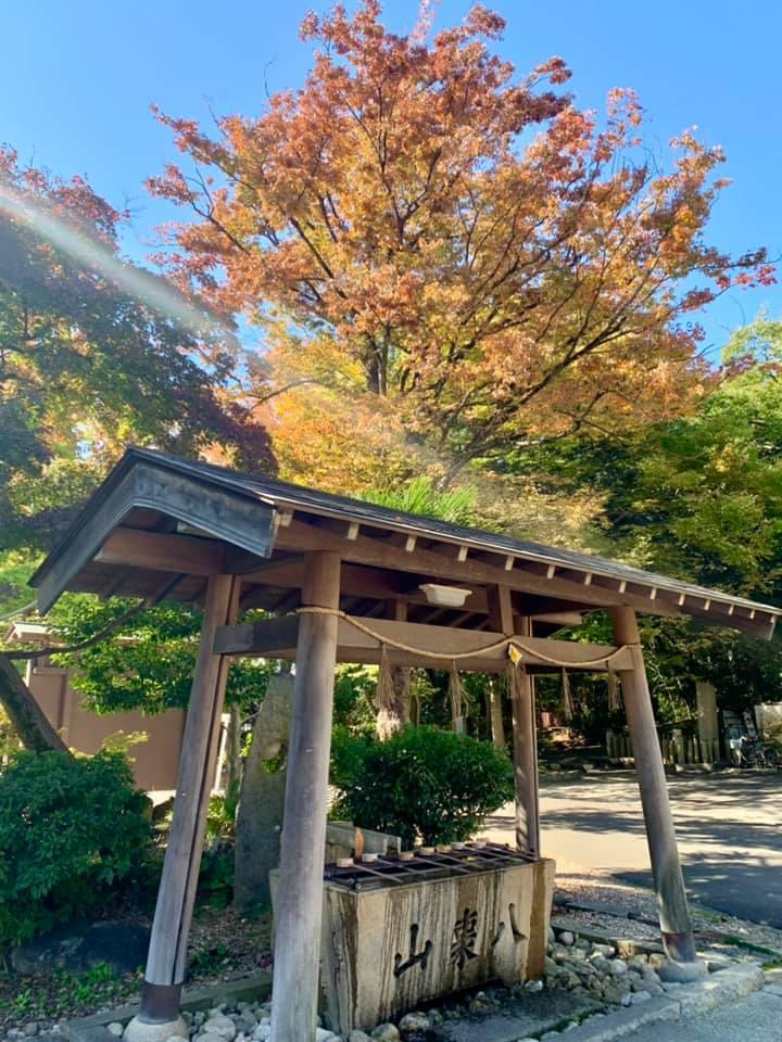 Temizu-ya et arbre d'automne dans la lumière matinale
