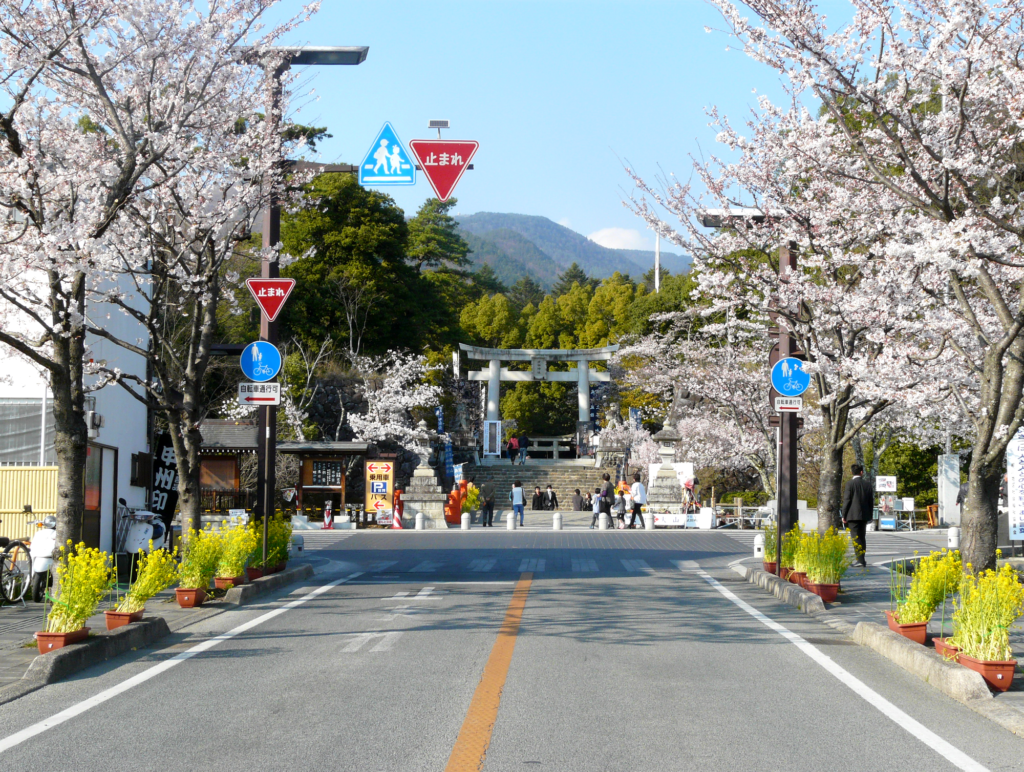 Le sanctuaire Takeda bordé de sakuras