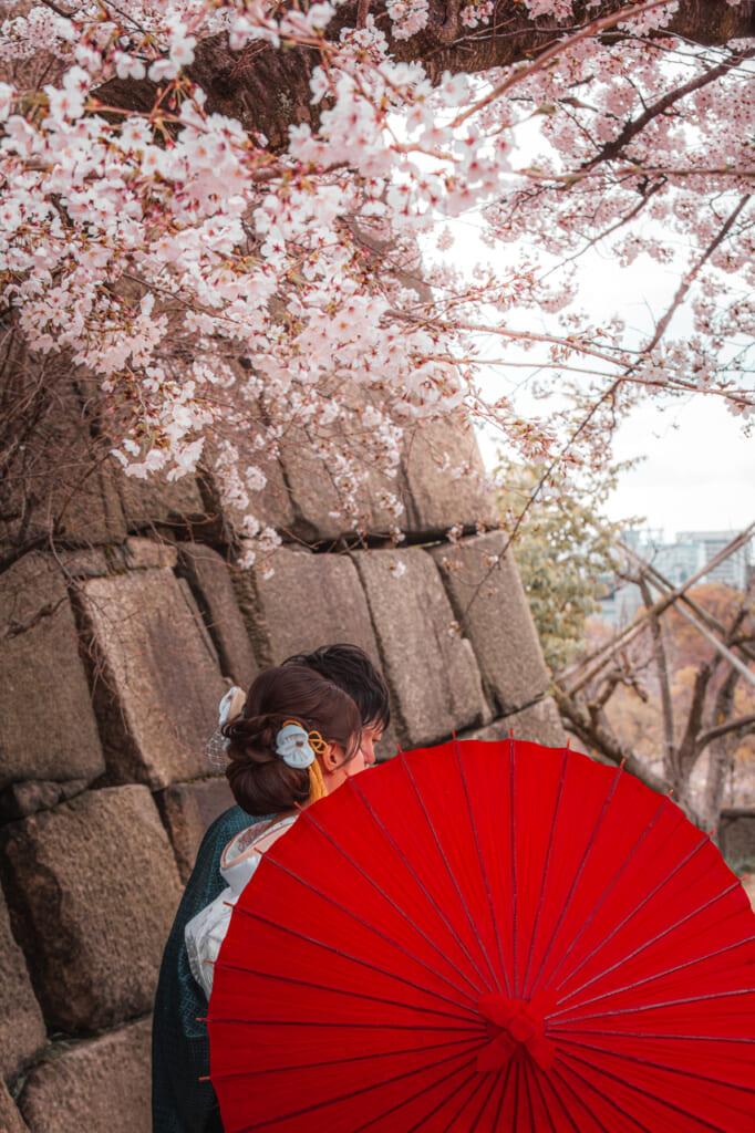 Couple sous les cerisiers en fleurs