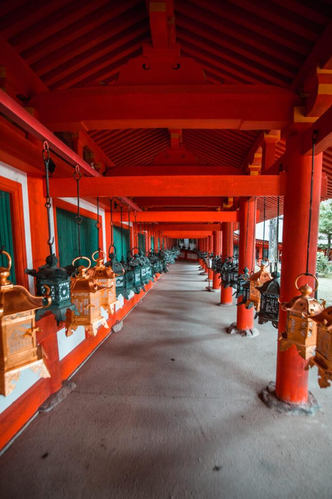 Allée de lanternes au Kasuga Taisha