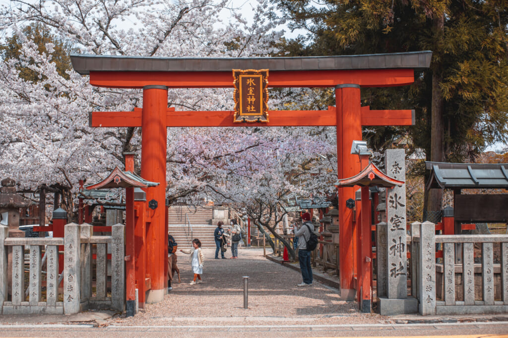 Torii du sanctuaire Himuro