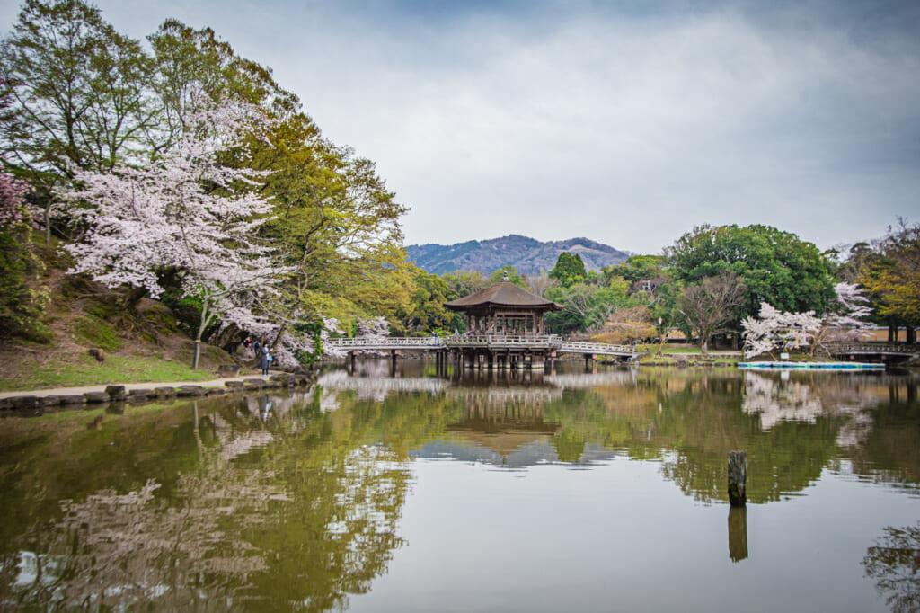 Le Pavillon Ukimido, idéal pour une séance photo