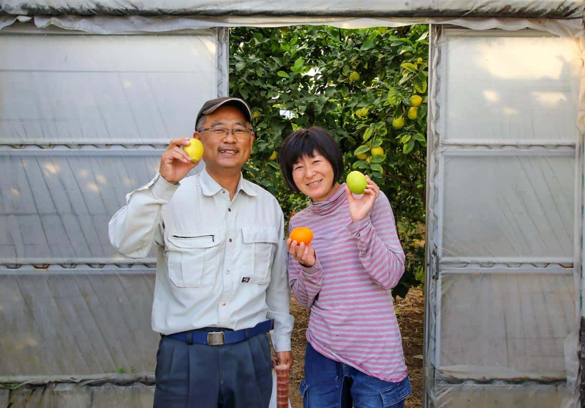 À la découverte de la vie rurale des îles de Setouchi le long de la Shimanami Kaido