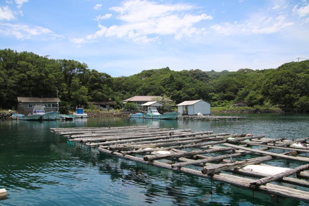 radeau servant à élever les huîtres perlières au japon