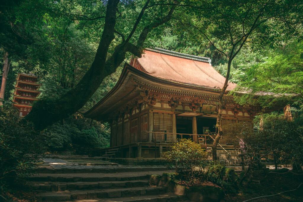 Temple japonaise et pagode dans la forêt