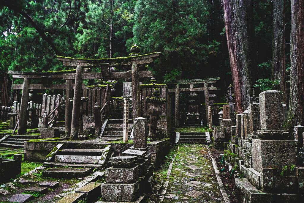 Torii et tombes dans le sanctuaire Okuno in à Koyasan