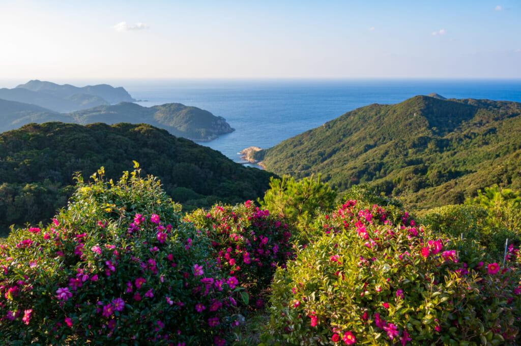 L'île de Hisaka et ses camélias sur les îles Goto