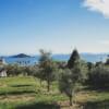 Vue sur la mer intérieure de Seto depuis le Shodoshima Olive Park