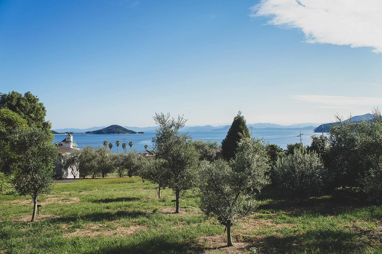 À la découverte des olives de Shodoshima, la plus méditerranéenne des îles japonaises