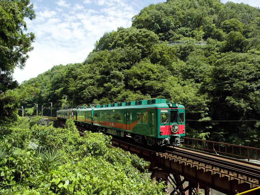 Le train japonais Tenku traverse une forêt